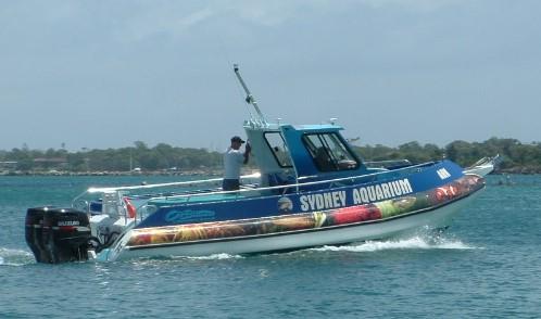 Cuddy Cabin Work Boat